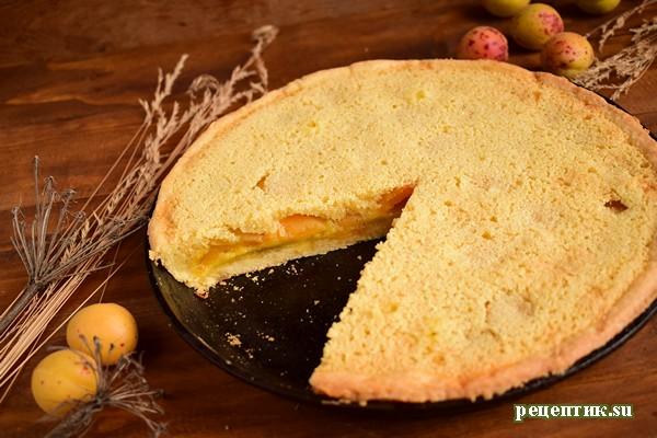 Абрикосовый пирог из двух видов теста - рецепт с фото, результат